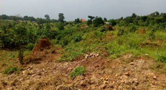 Farmland for sale in Guluddene Kiwenda at shs 29,000,000