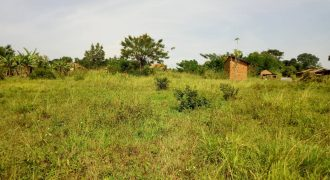 Plots for sale in Kira-Nsasa at shs 250,000,000