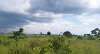 Plots for sale in Garuga Entebbe at shs 250,000,000,000
