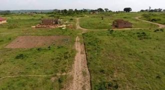 Plots for sale in Kakiri town council at shs 24,000,000