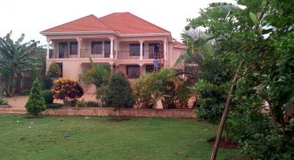 House for sale Bwebajja Entebbe road at shs 800,000,000