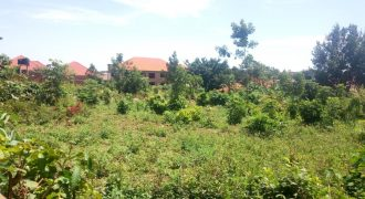 Plots for sale in Najjera-Kungu at shs 500,000,000