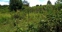 Plots for sale in Mutundwe at shs 1,600,000,000