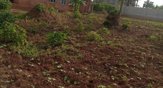 Plots for sale in Kitagobwa Kasangati at shs 45,000,000