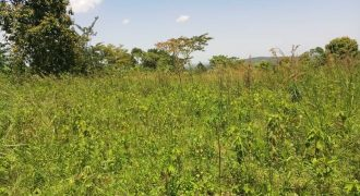 Plots for sale in Kawanda at shs 250,000,000