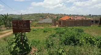 Plots for sale in Nsasa Jomayi at shs 65,000,000