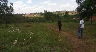 Plots for sale on Nabusugwe hill at shs 28,000,000