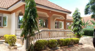 House for sale in Kiteezi at 120,000,000