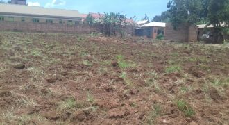 Plots for sale in Kirowoza Mukono at shs 40,000,000