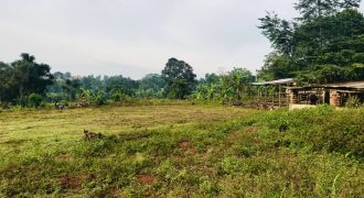 Plots for sale in Gayaza Buwanga at shs 15,000,000