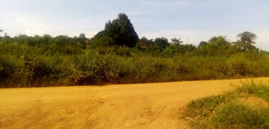 Plots for sale in Mukono Nsuube at sh 60,000,000