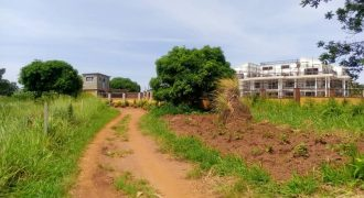 Plots for sale in Bwelengwa Bugiri at shs 185,000,000