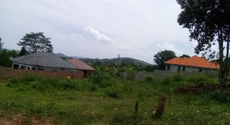 Plots for sale in Kitende Kitovu Entebbe road at shs 90,000,000
