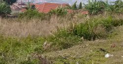 Plots for sale in Gayaza Ddundu at shs 14,000,000