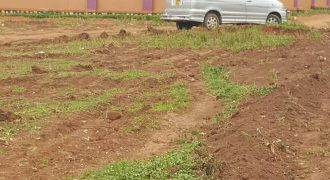 Plots for sale near Conerstone resort Ssebo green at shs 55,000,000 US dollars