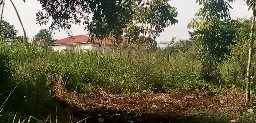 Plots for sale in Wakiso at shs 20,000,000