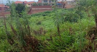 Plots for sale in Nakwero at shs 105,000,000