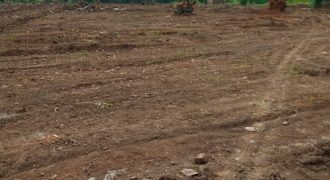 Plots for sale in Kasangati Maule at hs 25,000,000