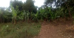 Plots for sale in Natete at shs 350,000,000