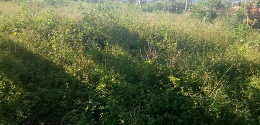 Plots for sale in Kasawo at shs 12,000,000