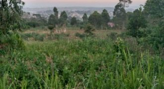 Plots for sale in Katwe village Nakawuka parish at shs 60,000,000