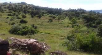 Plots for sale in Kiwenda at shs 15,000,000