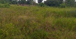 Plots for sale in Banda at shs 750,000,000