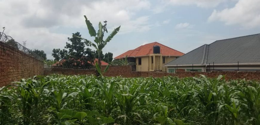 Plots for sale in Kiwoko at shs 3,000,000
