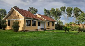 3 Bedroom 3 Bathroom House for Rent On Masese Hill Jinja