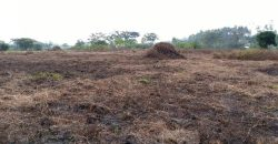 Plot for sale in Kasengejje Wakiso at shs 16,000,000