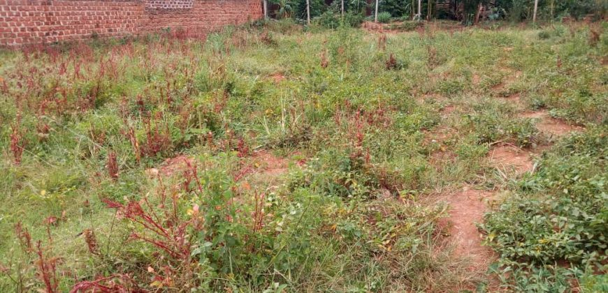 Plots for sale in Namugongo at shs 150,000,000