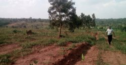 Plots for sale in Lwata at shs 2,300,000