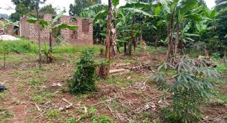 Plots for sale in Najjera Kunga at shs 75,000,000