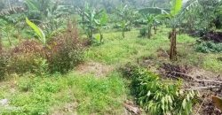 Plots for sale in Kiwenda at shs 40,000,000