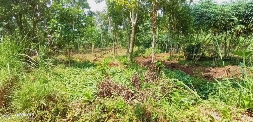 Plots for sale in Jogoo Budugala at shs 13,000,000