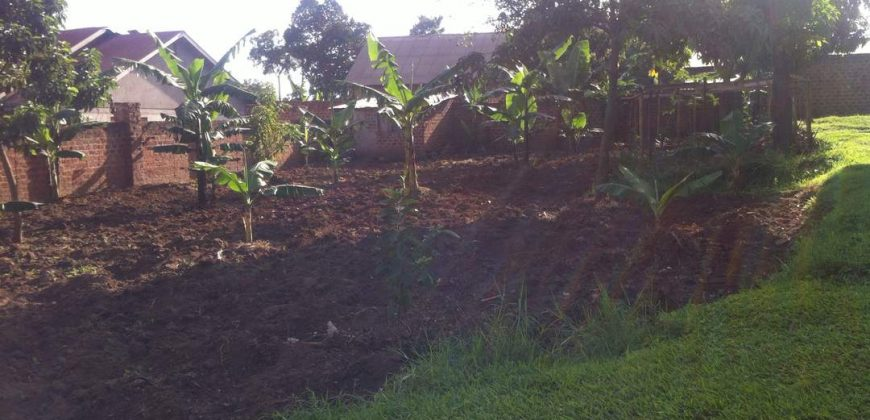 Plots for sale in Mperelwe Namere at shs 62,000,000