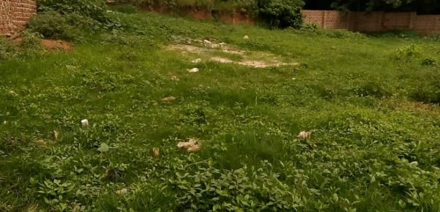 Plots for sale in Mukono at shs 35,000,000
