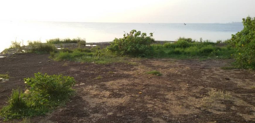 Plots for sale in Nsonga Mukono at shs 20,000,000