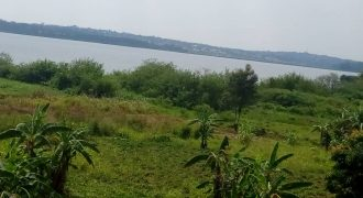 Plots for sale in Nkokonjeru at shs 14,000,000