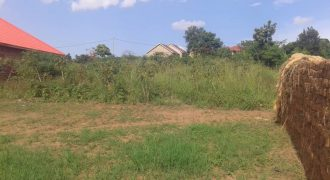 Plot for sale in Matugga town at shs 65,000,000