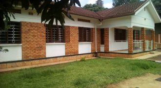 House for rent in Naguru at shs 1000 US dollars
