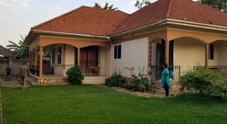 Bungalow for sale in Muyenga Bukasa road at shs 500,000,000