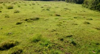 Plots for sale in Bwerenga Bugiri at shs 300,000,000