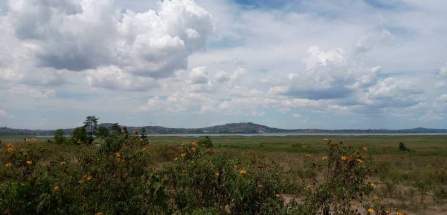Plots for sale in Lutembe at shs 300,000,000