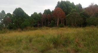 Plots for sale in Kabanyolo at shs 35,000,000