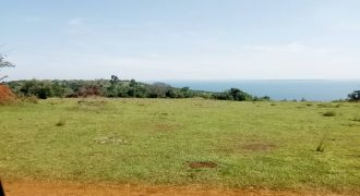 Plots for sale in Nkokonjeru at shs 7,000,000