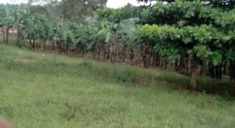 Plots for sale in Bunga Kawuku at shs 350,000,000