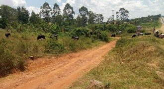 Plots for sale along Bombo road at shs 170,000,000