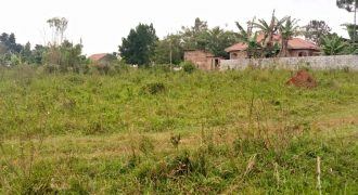 Plots for sale in Gayaza Gitta at shs 130,000,000