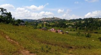 Plots for sale in Mukono near UCU at shs 60,000,000